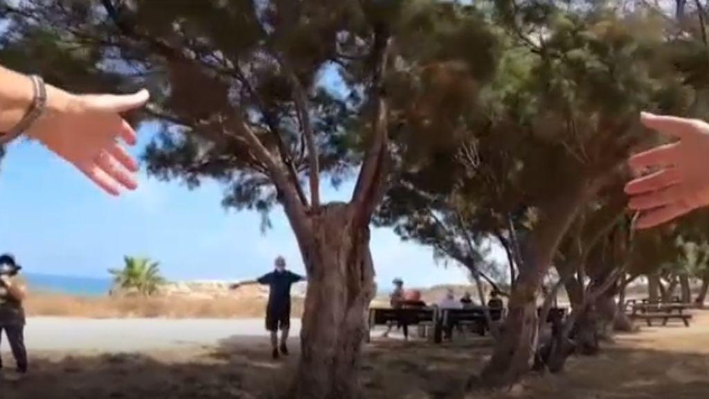 El Gobierno israelí lanza una campaña para que la población abrace a los árboles del país
