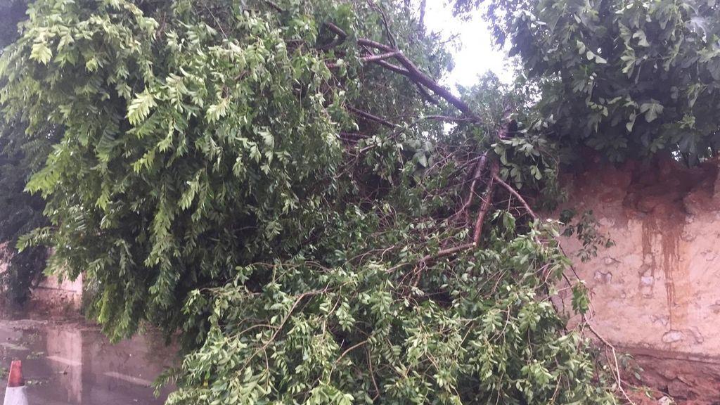 Las tormentas barren la provincia de Valencia de interior a costa y dejan daños materiales en la Plana de Utiel-Requena